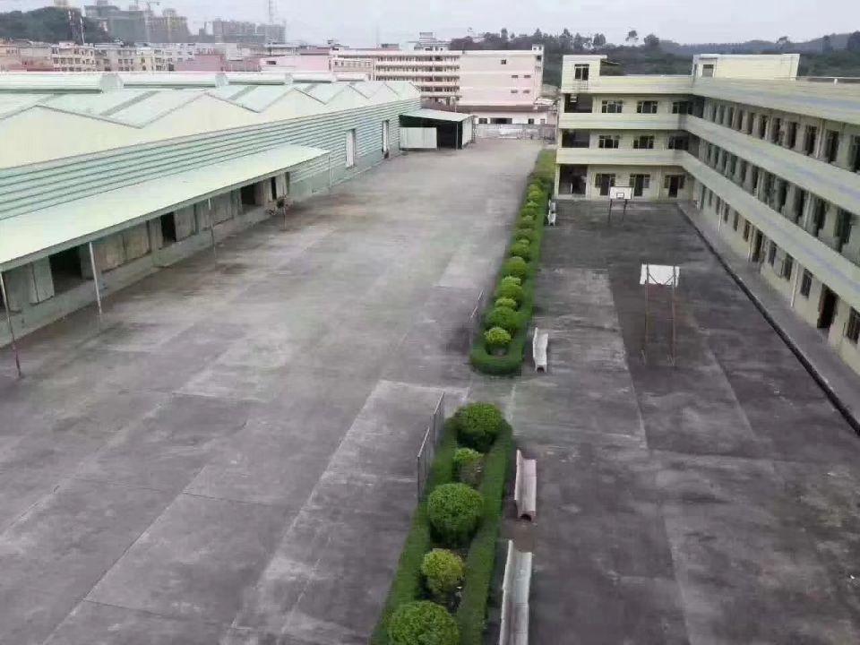 常平22000平方独院钢构厂房出租实际面积
