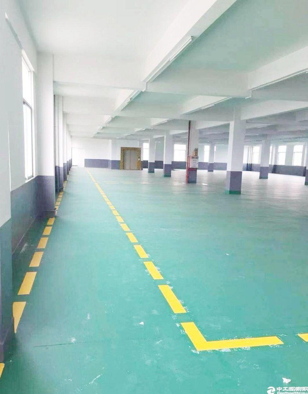 广州天河新出800平带货梯两吨标准厂房可生产注册出租可分租