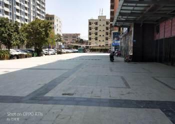 龙溪独栋商业写字楼出租图片1