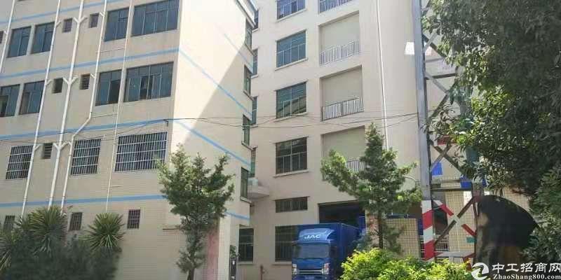 标准厂房,分租一二楼2600平方