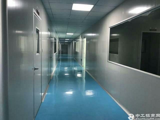 广州黄埔实业客分租楼上2600平制药室