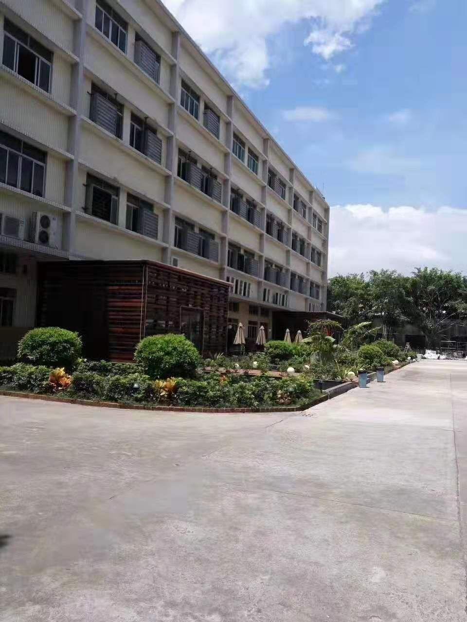 大石工业区标准厂房1600平米,带全新地坪漆