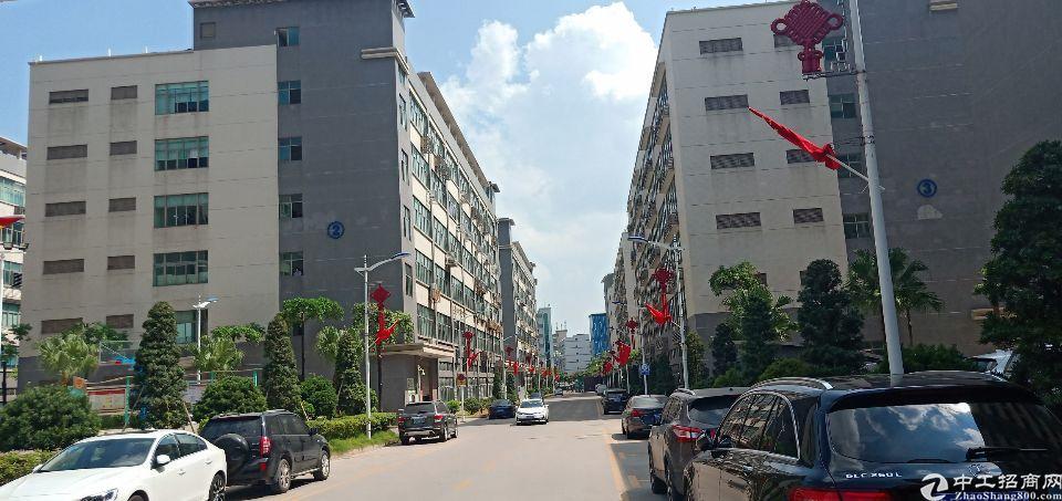 龙华新区大浪行政中心新出楼上精装厂房2100平水电到位,可分