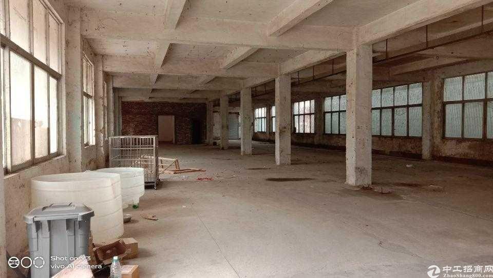 花都区花东镇1楼500平方标准厂房