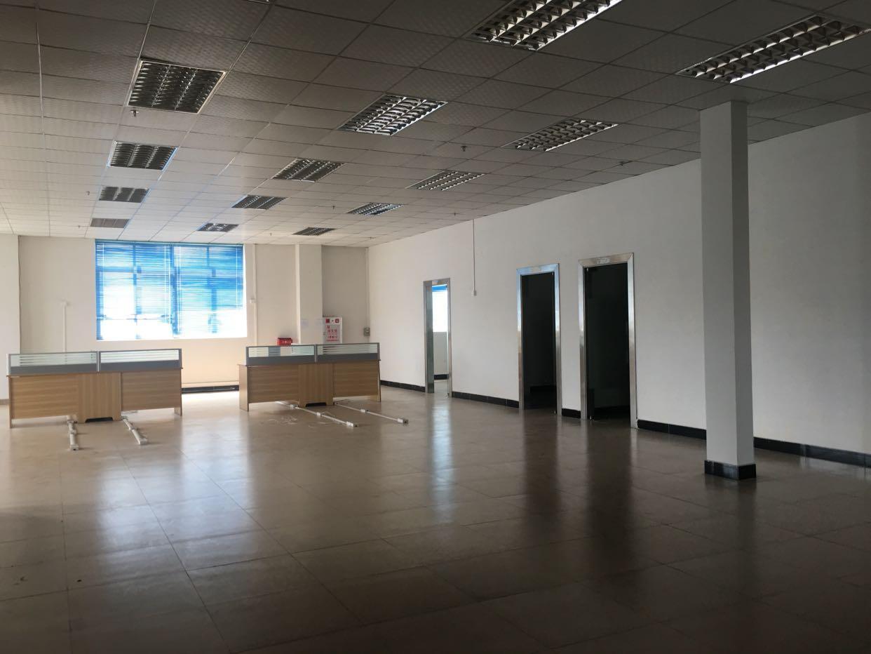 横沥原房东独院厂房3000平方,带办公室装修