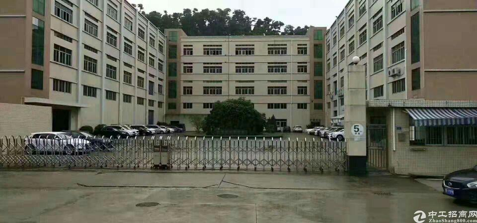 凤岗省道边上物流仓库20000平米出租