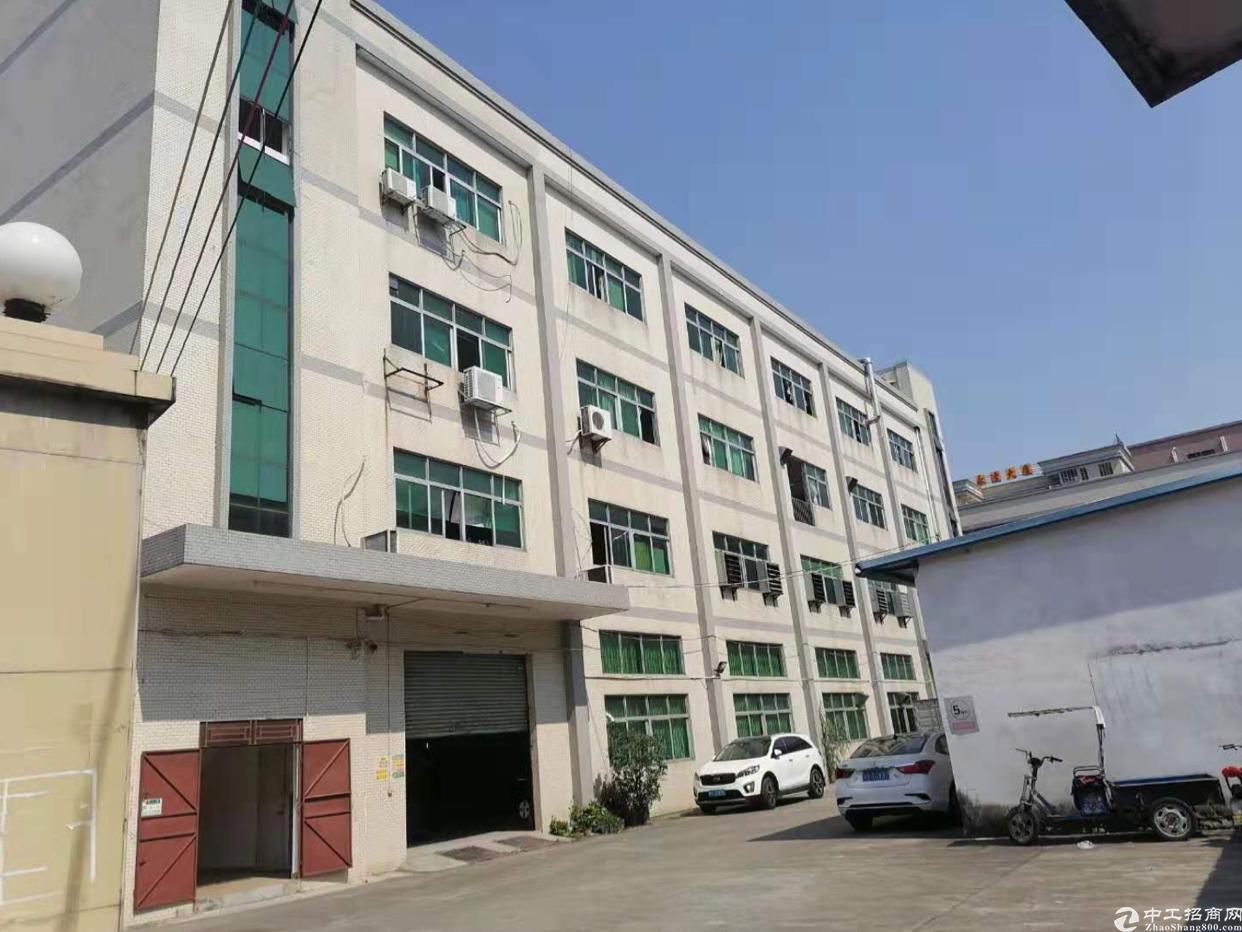 石排新出原房东6600方独院厂房