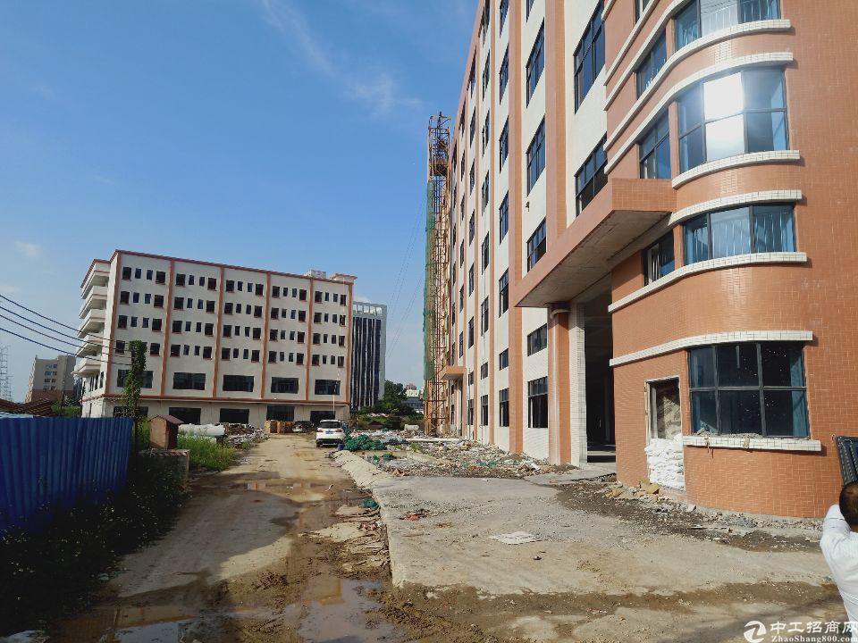 大岭山新出全新标准厂房1-7层两栋可分租,马上完工可进厂生产
