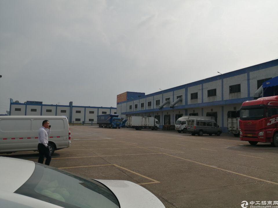 原房东标准物流仓库5000平方实际面积出租带喷淋和红本厂房