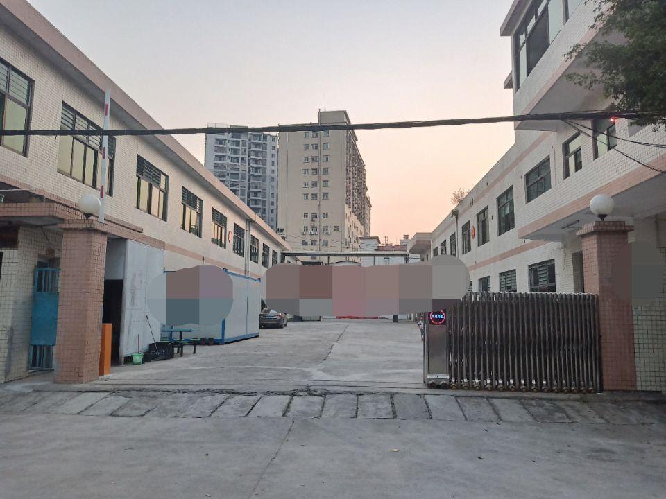 长安镇沙头社区独院标准厂房
