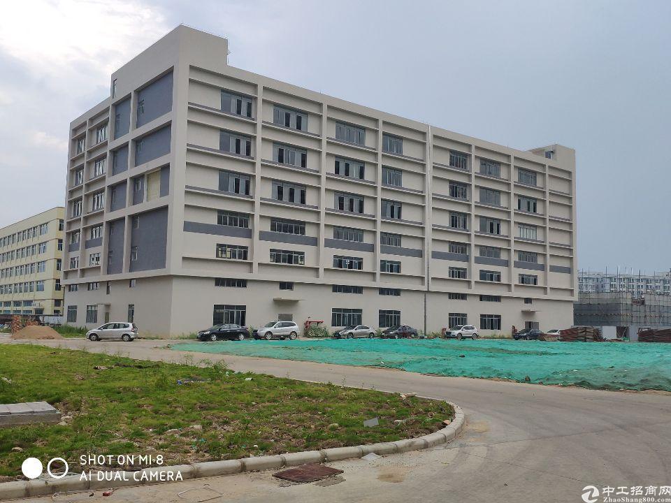 新华工业区7000平独院厂房出售