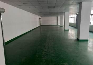 福永白石厦独门独院楼上400平米实际面积精装修厂房出租图片3