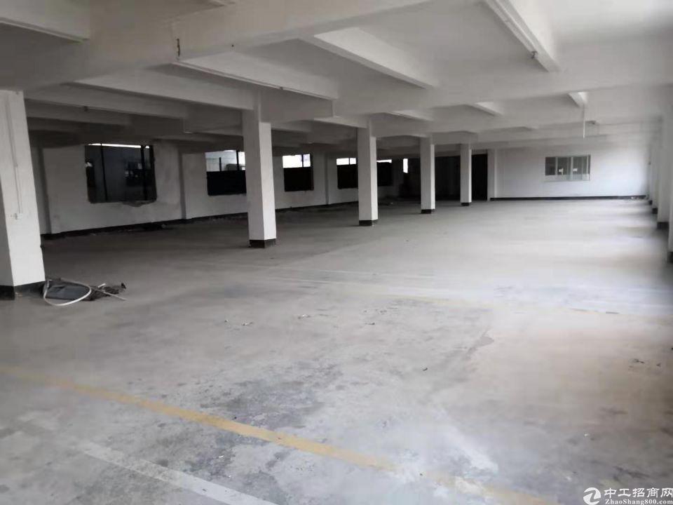 长红楼上一千平方厂房仓库出租