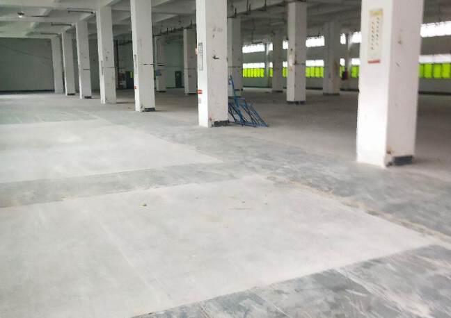 福永塘尾一楼3000平厂房出租