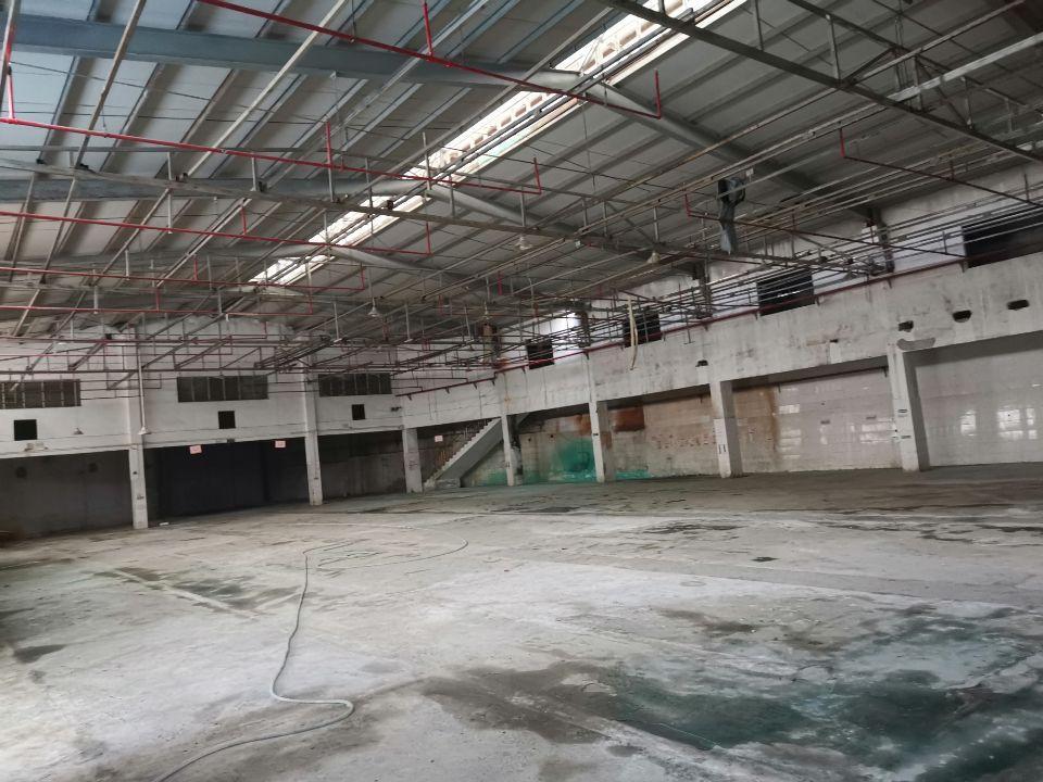 茶山镇厂房单一层4000平方