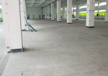 福永塘尾一楼3000平厂房出租图片1