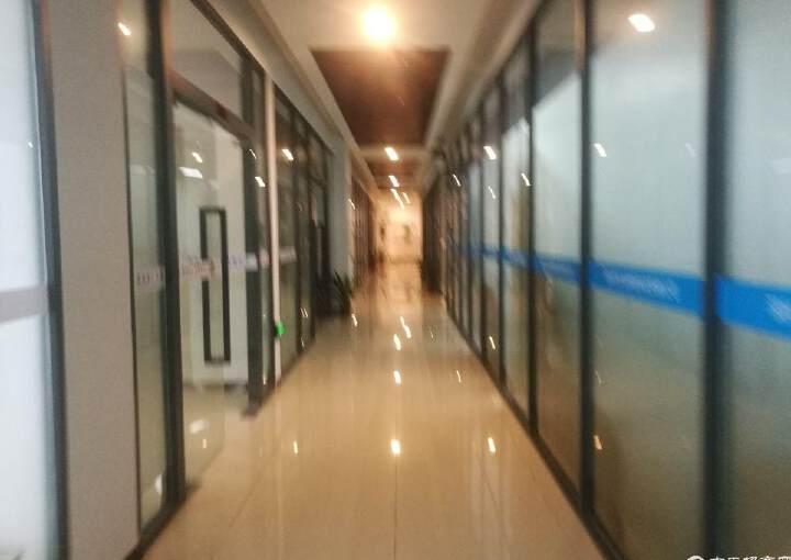 沙井107国道边上带货梯写字楼只租20元图片1