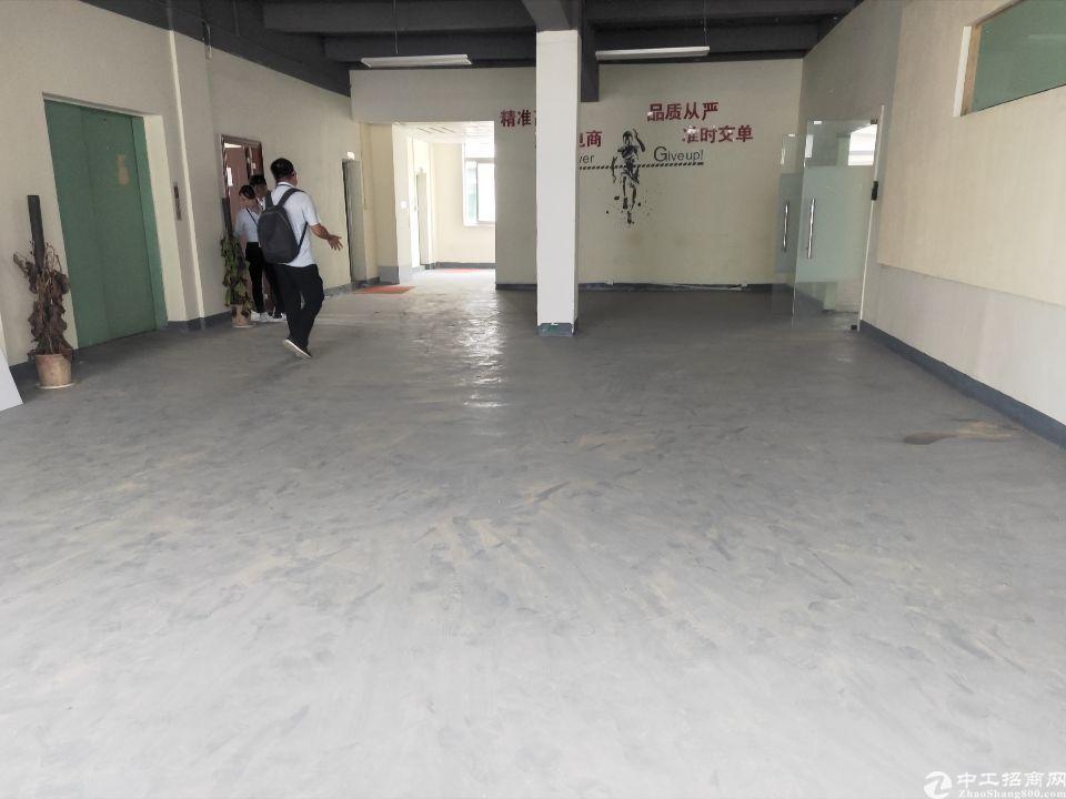 西乡鹤洲大型工业园内新出楼上整层1000平米-图6
