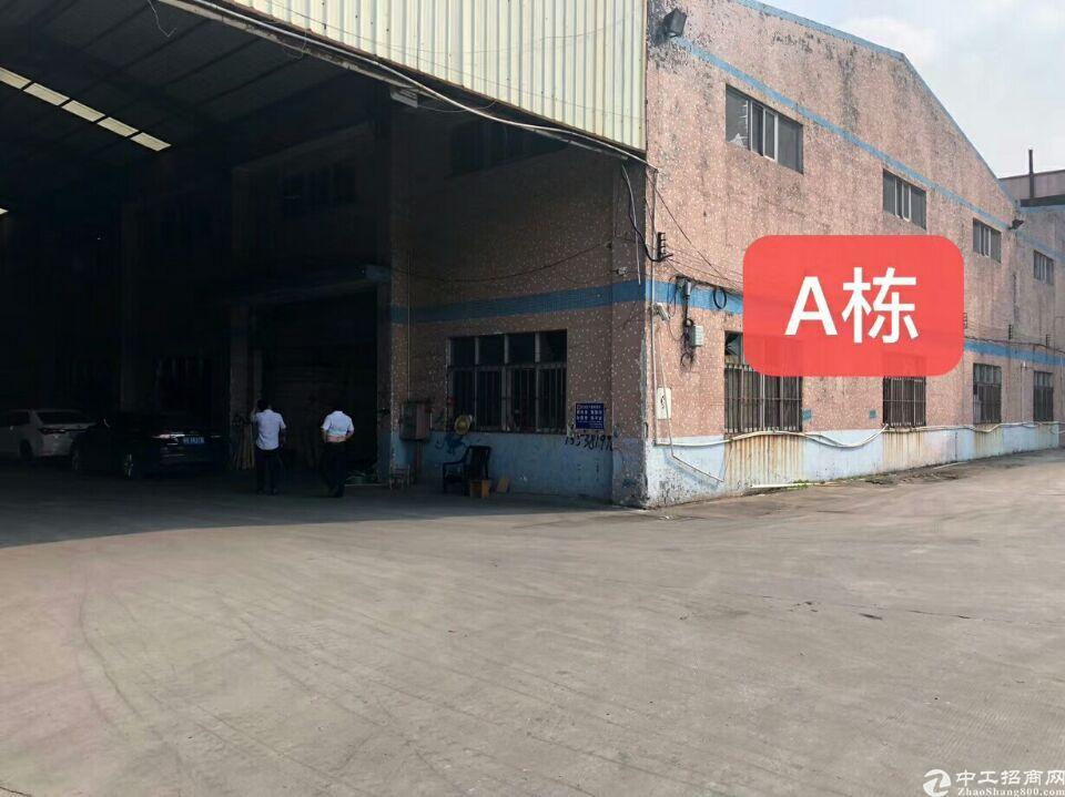 大岭山钢构厂房2500平方厂房17块招租