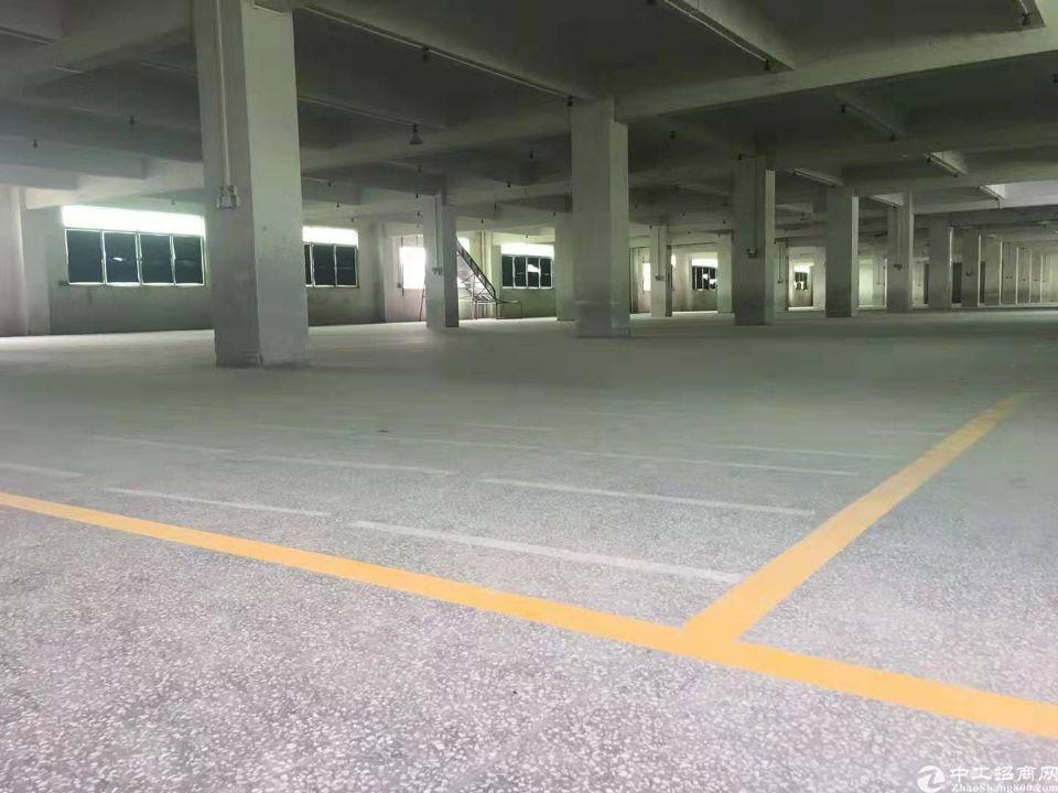 天河吉山标准厂房3000方金刚砂地面可分租-图2