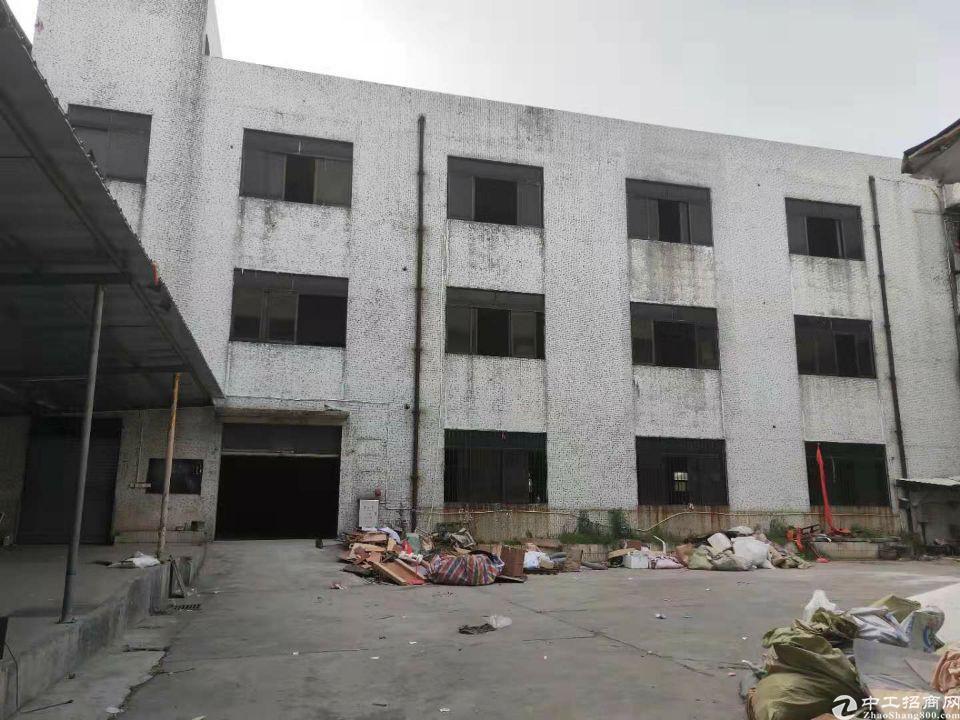望牛墩原房东标准厂房3700平米,租12