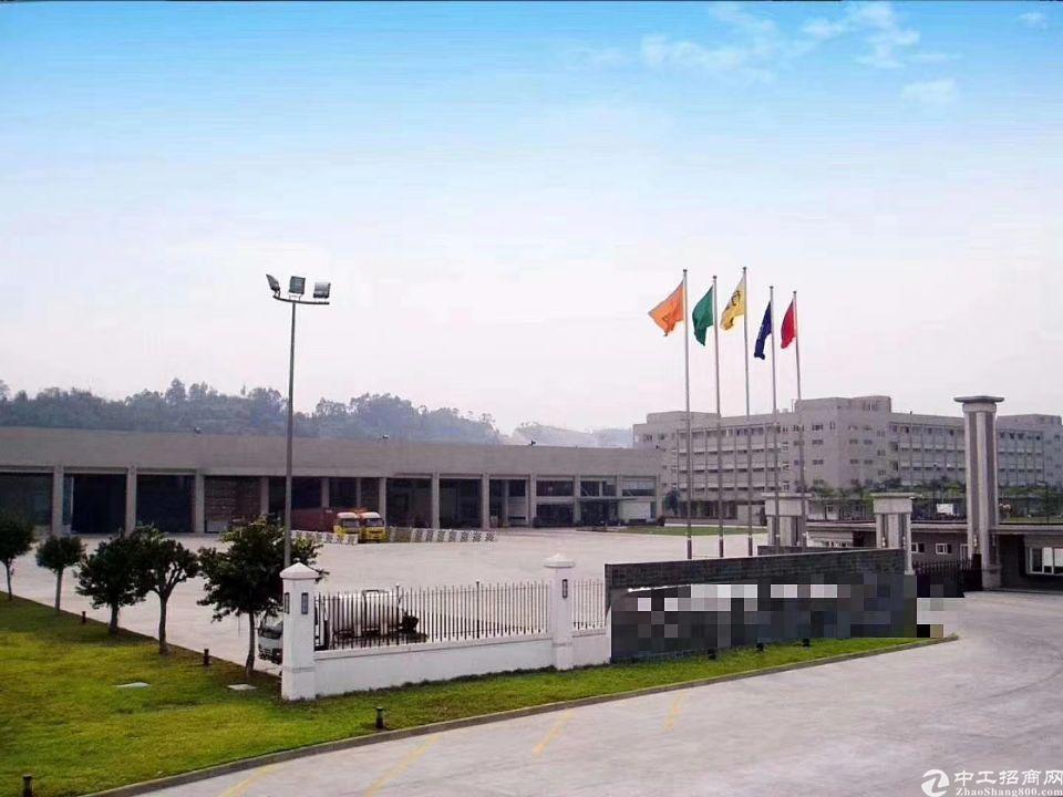惠州沥林潮莞高速出口 8年回本钢构独院厂房15000㎡出售