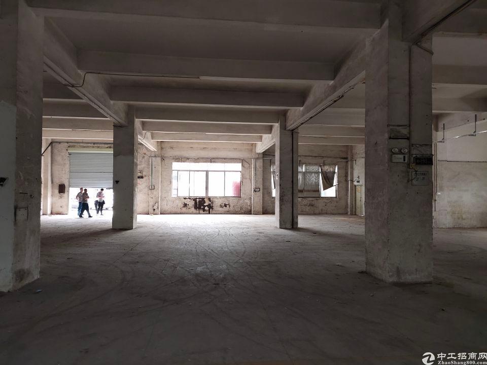 石岩一楼1500平厂房特价出租可做贸易,生产等大小面都有