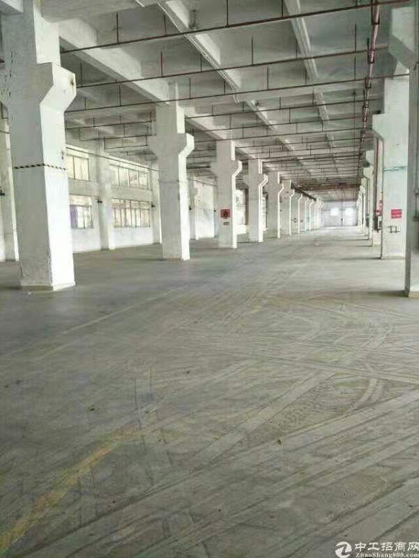 东莞道滘全新标准厂房10万平一楼7.5米高享受市政府补贴
