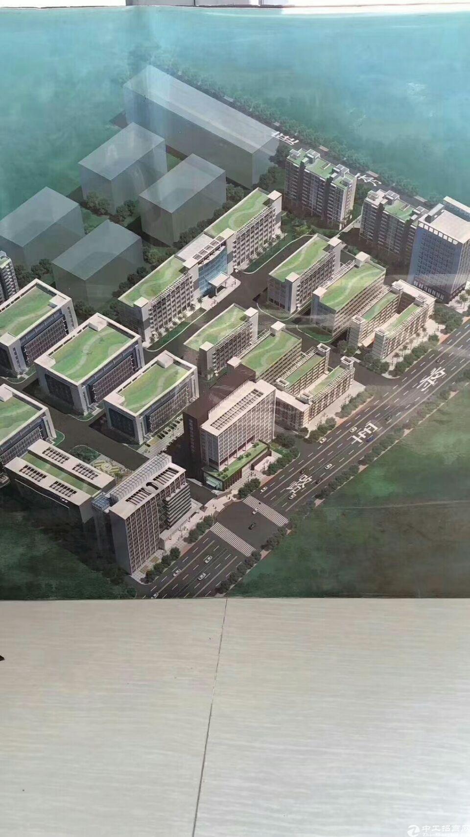 中山138亩的新净国有证厂房出售