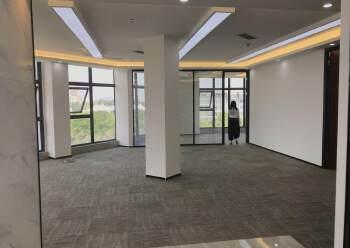 龙华清湖雪岗北附近新出精装修办公室出租168平-500平面积图片5