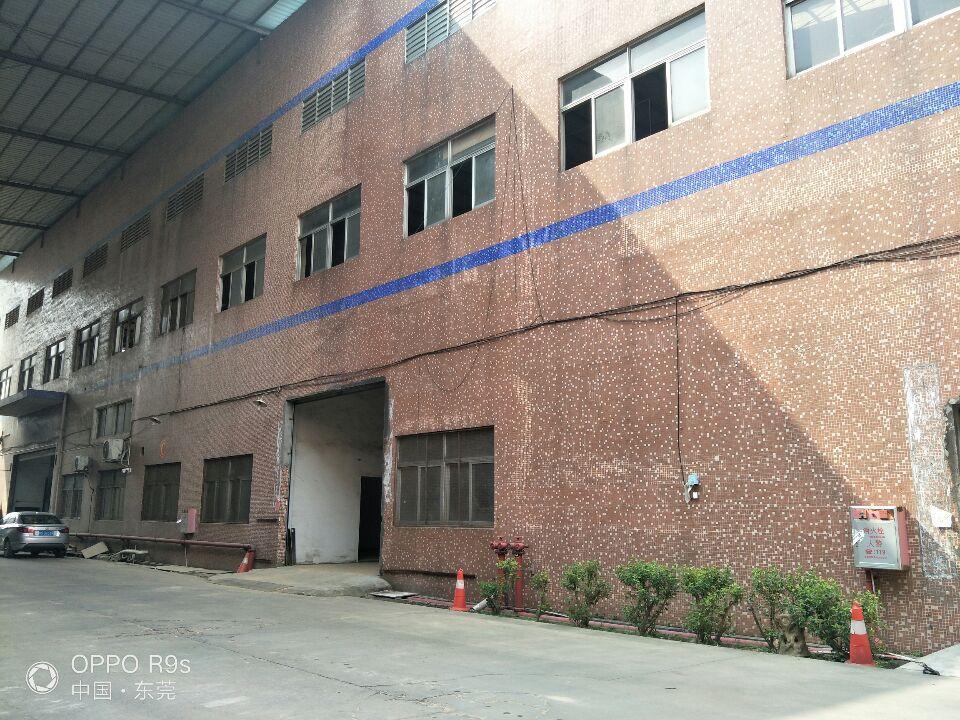大岭山新塘村工业园5.5米高标准一楼厂房出租