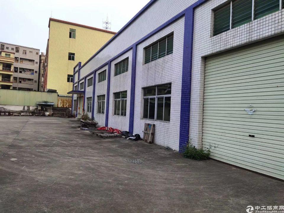 新塘镇独院钢结构厂房2000平,滴水8米,中间无柱,交通方便