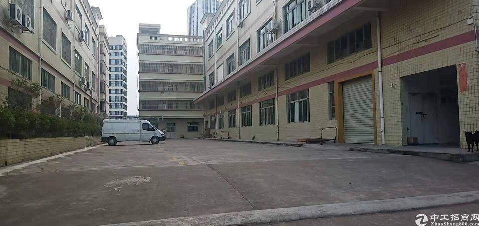 龙岗区原房东标准厂房出租