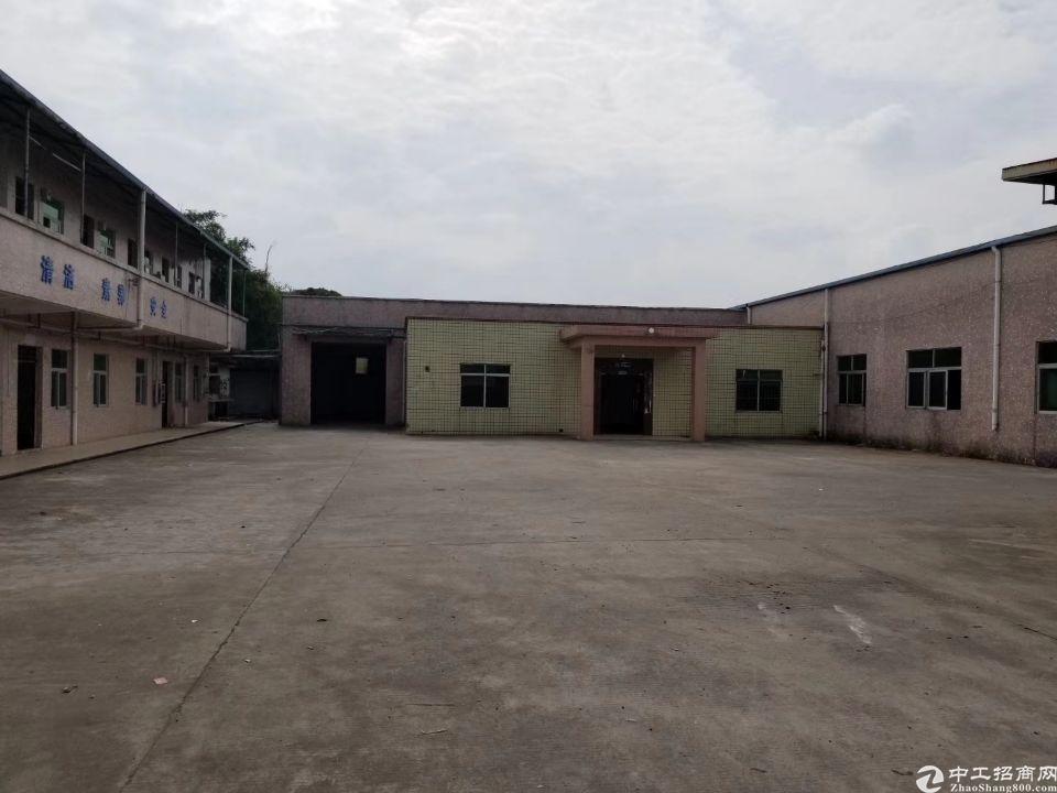 茶山镇新出经典独门独院撞墙钢构招租 厂房