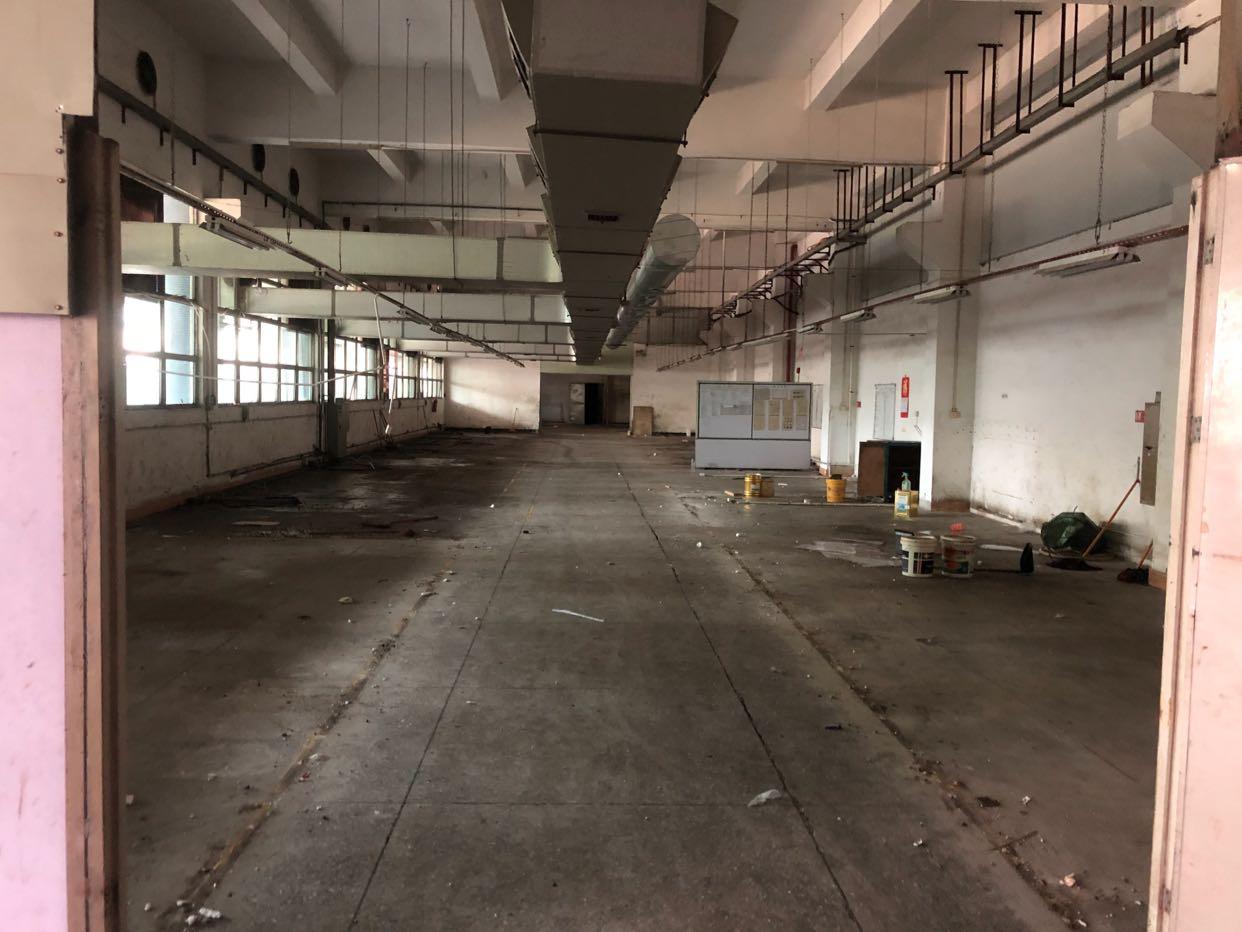 塘厦精品独门独院厂房带办公室装修水电全通离高速近300米