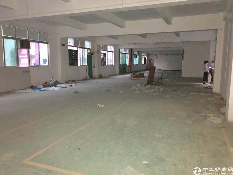 龙华中心原房东厂房1300平实际面积1100平,停车位充足