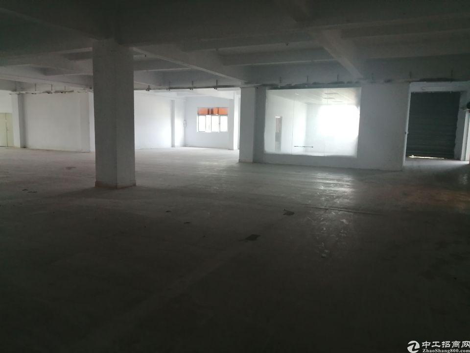 树田附近新出楼上花园式厂房-图3