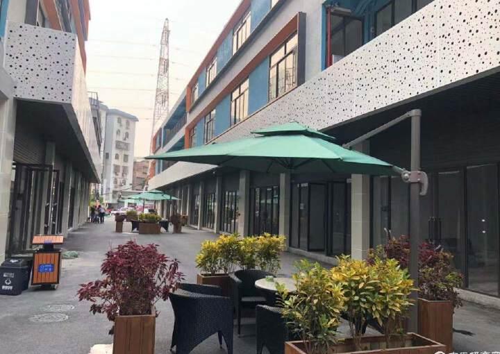 广州海珠区新出大型写字楼12000平精装修图片5