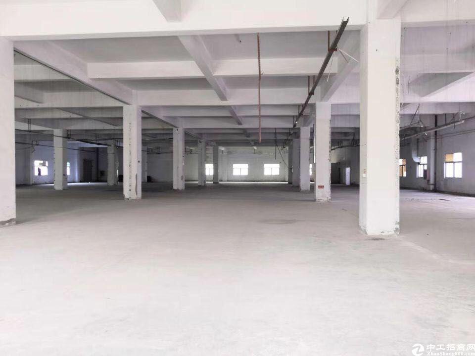 龙华工业区新出精装厂房仓库可分