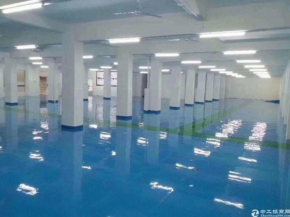 龙华工业园新出精装厂房仓库大小可分租