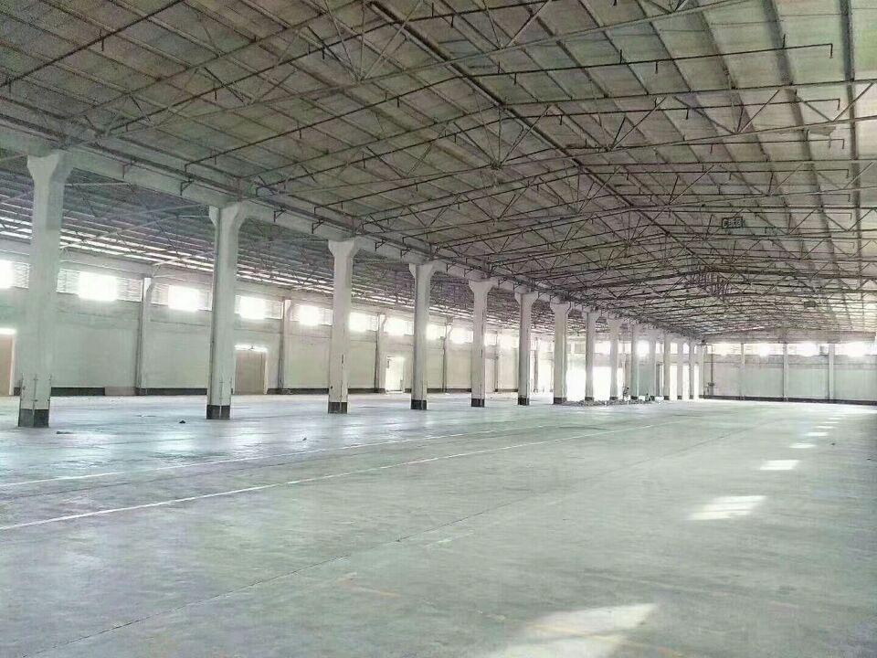 清溪最大单一层物流仓库出租 面积:36000平方,滴水高