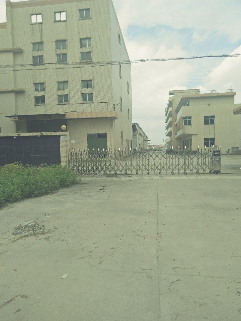 中堂万江高埗麻涌望牛墩标准独院厂房出租