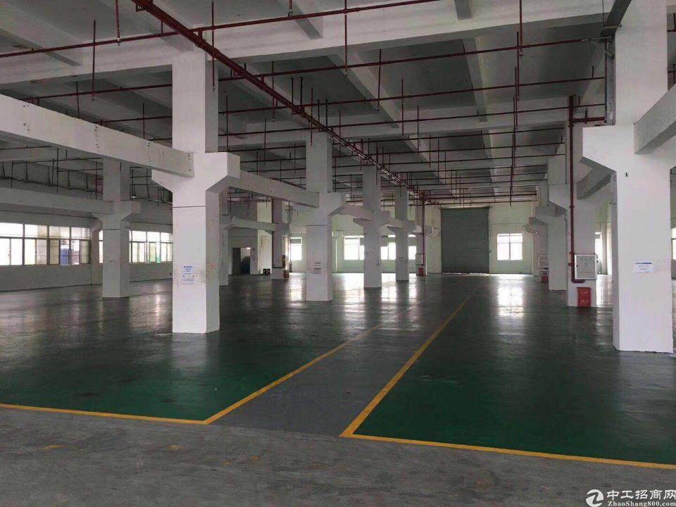 塘厦田心厂房13200平米独院厂房出租带国有证配电按需