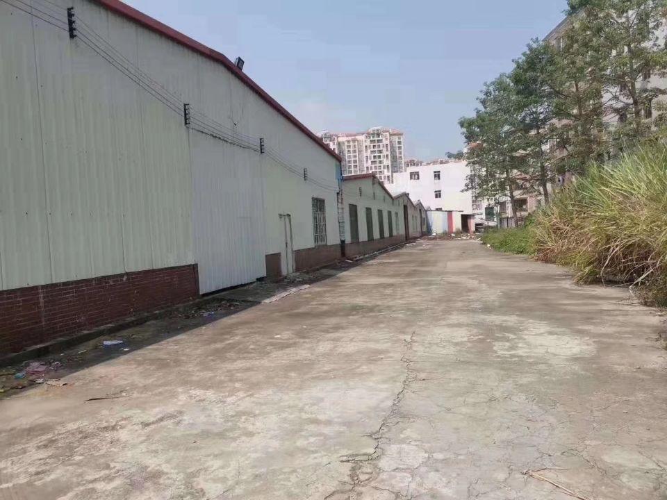 樟木头最便宜的物流仓库,单一层,13000平米独院仓库,有卸