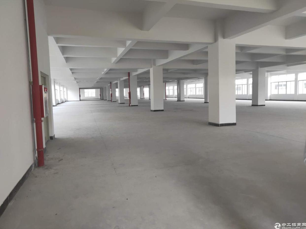 独门独院新厂房13块13块13块