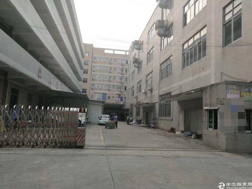 独门独院标准楼房1-5层空地大一手房源
