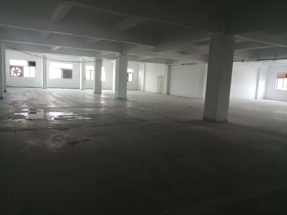 树田附近新出楼上花园式厂房-图2