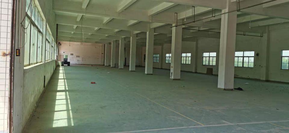 谢岗镇原房东厂房出租,高度五米高,交通十分方便