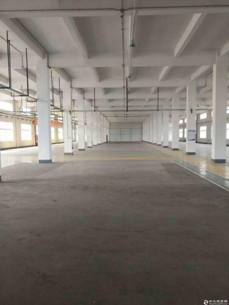 黄埔区独门独院护林路标准1楼仓库2800方超大空地出租。