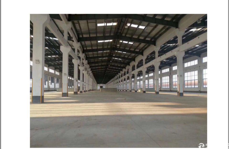 江门市主干道旁国有双证厂房15000㎡出售高度12米带牛角